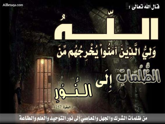 Allah è il Patrono di coloro che hanno creduto, Eli li fa uscire dalle tenebre verso la Luce... (significati del Nobile Qur'an).